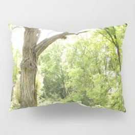NARNIA - The Forest  Pillow Sham