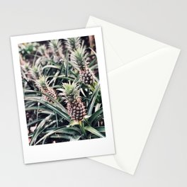 Maui Pineapples Stationery Cards