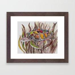 Tripping turtle Framed Art Print