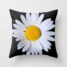 Daisy, shasta, on a pure black background Throw Pillow