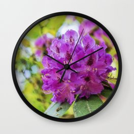 beautiful flowers in the rhododendron park Wall Clock