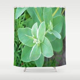 Flowers Shower Curtain