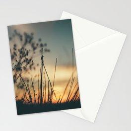Vintage Wild Grass Sunset Stationery Cards