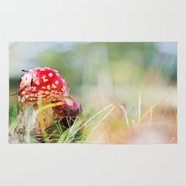 Amanita muscaria Rug