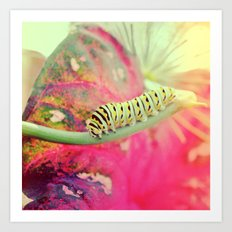 It's not a butterfly yet! Art Print
