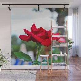 Red Rose Wall Mural