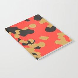 CAMO05 Notebook