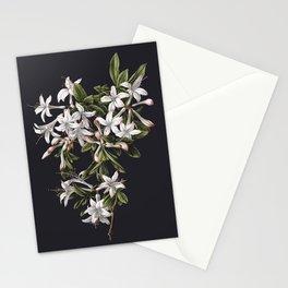 Azalia Flower Stationery Cards