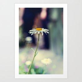 Daisy I Art Print