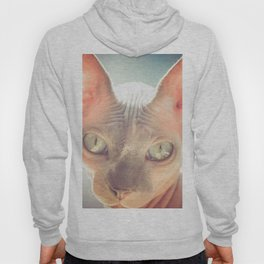 Floyd The Cat Hoody