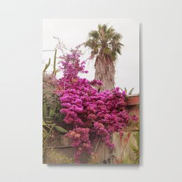 Fuchsia Garden Metal Print