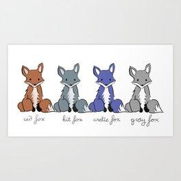 Cute Kawaii North American Fox Types Arctic Kit Red Gray Art Print