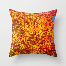 Blazing Fall Canopy Throw Pillow