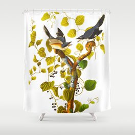 Loggerhead Shrike Bird Shower Curtain