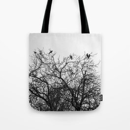 A murder of crows sitting in a tree Tote Bag
