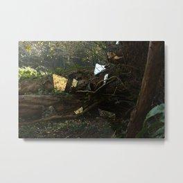 Woodland Shards Metal Print