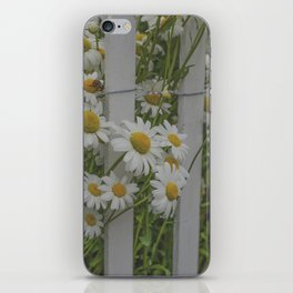 Daisy Days iPhone Skin