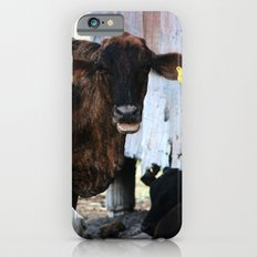 Gossips, the lot of them! iPhone 6s Slim Case