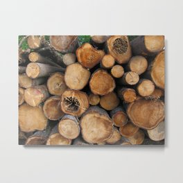 New Sawn Logs Metal Print