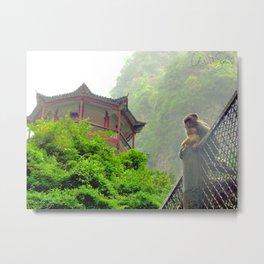 Monkeys in China Metal Print