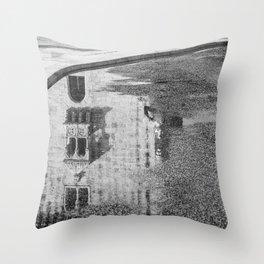 Reflet Throw Pillow