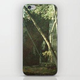 Vintage ruins gard iPhone Skin