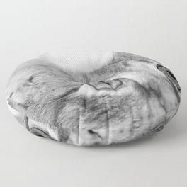 What's New KittyCat Floor Pillow