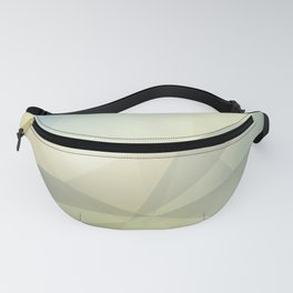 Poly Fanny Pack