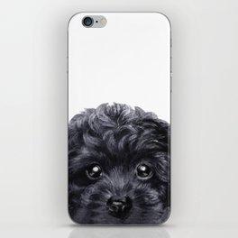 Black toy poodle Dog illustration original painting print iPhone Skin