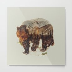 Wild Grizzly Bear Metal Print
