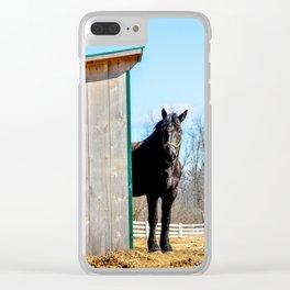 Percheron Horse by Teresa Thompson Clear iPhone Case