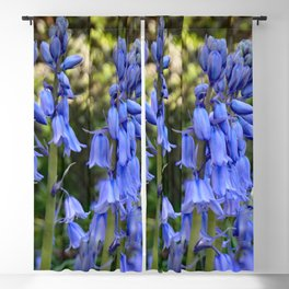 Bluebells Blackout Curtain