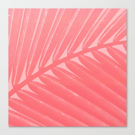Hot Pink Palm Canvas Print