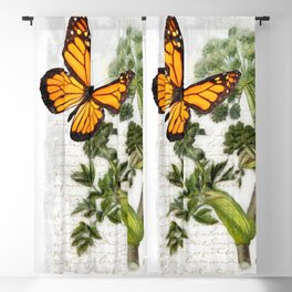 Angelica Herb Botanical Blackout Curtain