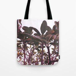 Canopy in Mauve Tote Bag