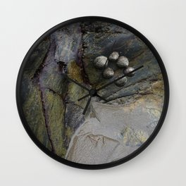 Collection of Limpets on Coastal Rocks Wall Clock