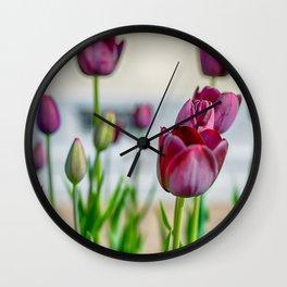 Steckborn Tulips Wall Clock