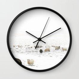 Icelandic Sheep IIII Wall Clock