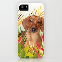 Little Dog with with Palm leaves iPhone Case