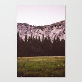 Yosemite Valley V Canvas Print