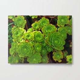 Silky Swirling Green Leaves Metal Print