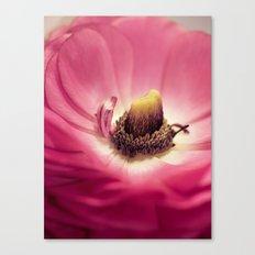 Ranunculus heart Canvas Print