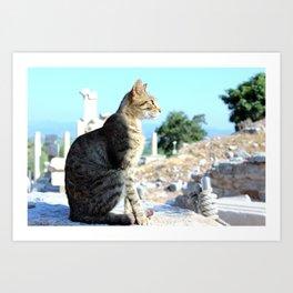 Elegant Cat Art Print