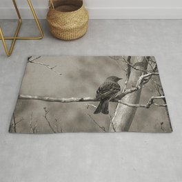 The Quest:  Black and White Bird Antiqued Rug