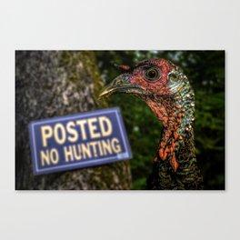 Wild Turkey Hunting Canvas Print