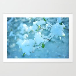 Winter's Bough Art Print