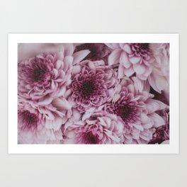 Violet Red Art Print