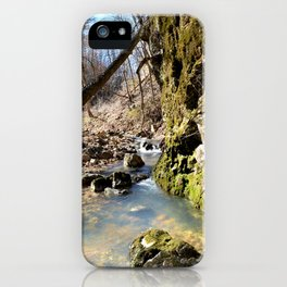 Alone in Secret Hollow with the Caves, Cascades, and Critters - Peering into the Cold, Clear Spring iPhone Case