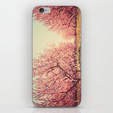 Springtime Dream iPhone & iPod Skin