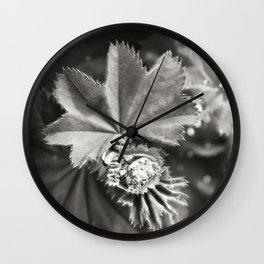 Secret Garden ~ No.11 Wall Clock